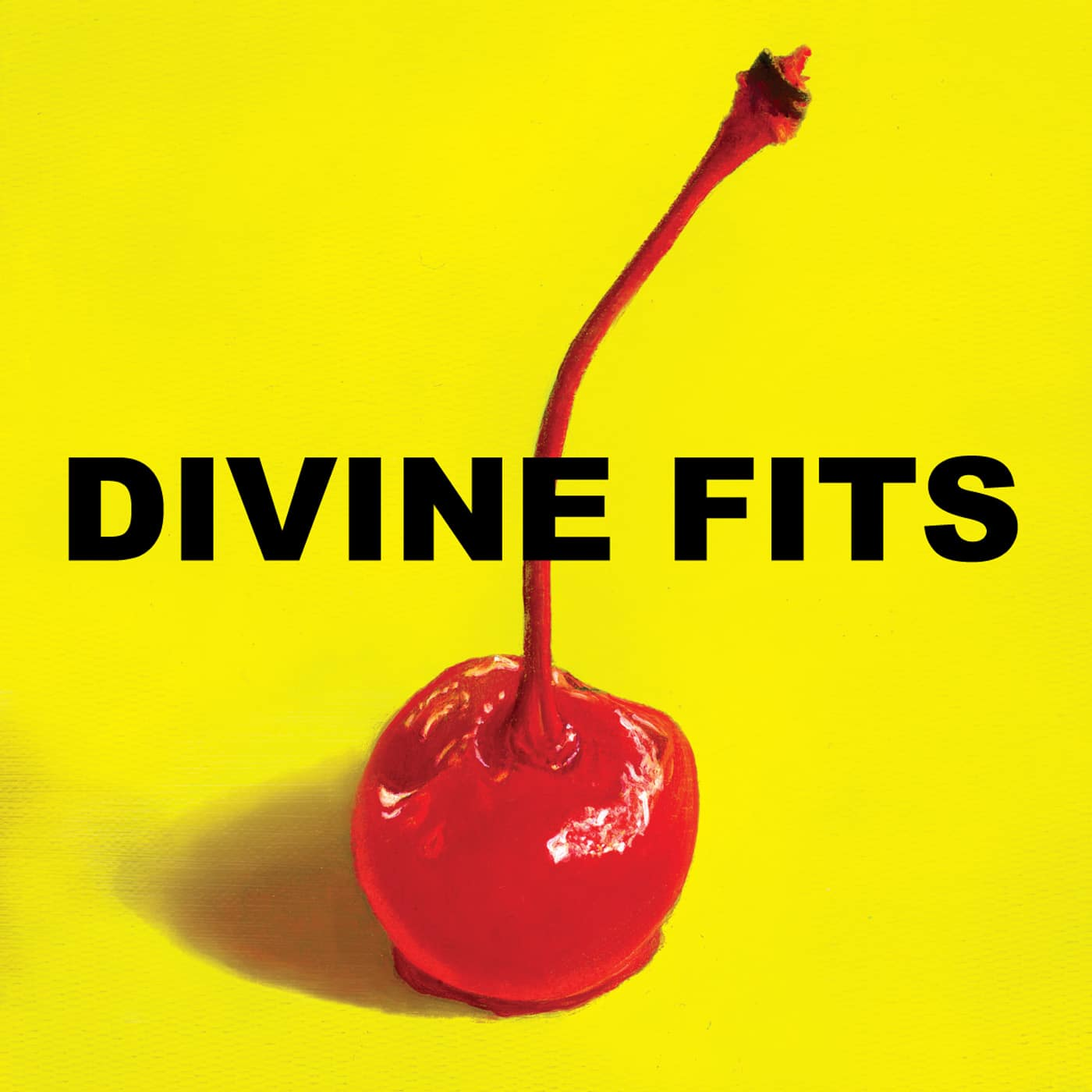 Would That Not Be Nice pop rock Divine Fits decouverte  Divine Fits   Would That Not Be Nice artworks 000025686399 wc4apg original