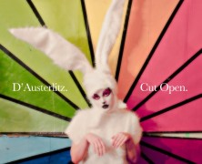D&rsquo;Austerlitz &#8211; Cut Open-EP