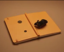 A year of full color : des moleskines en stop motion