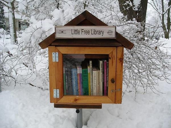Little-Free-Library-street-aart