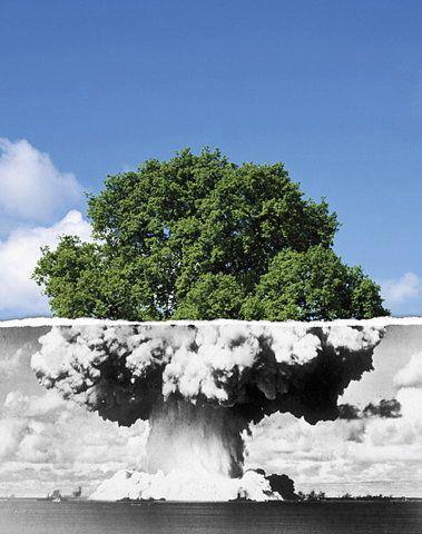 street-art-arbre-nucleaire