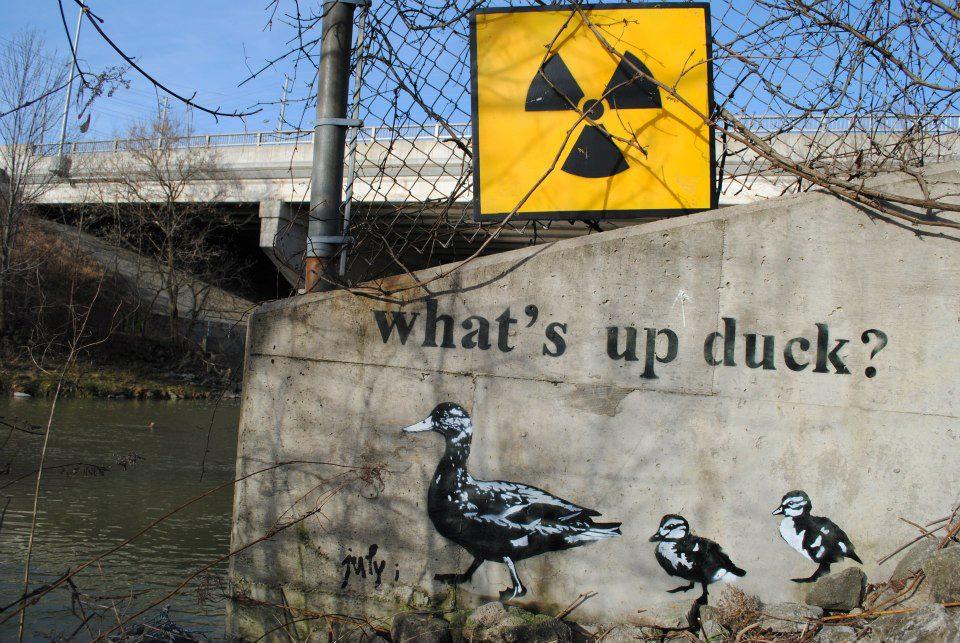 whatup-duck-street-art