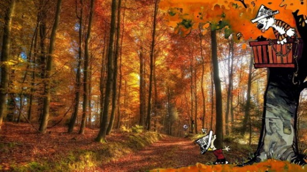 Calvin-and-Hobbes-Real-Photographs-10-600x336
