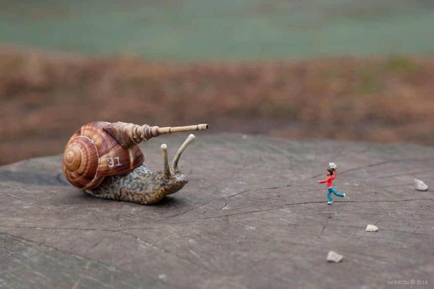 escargot baston