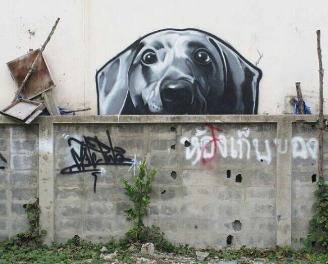 dog street-street art-