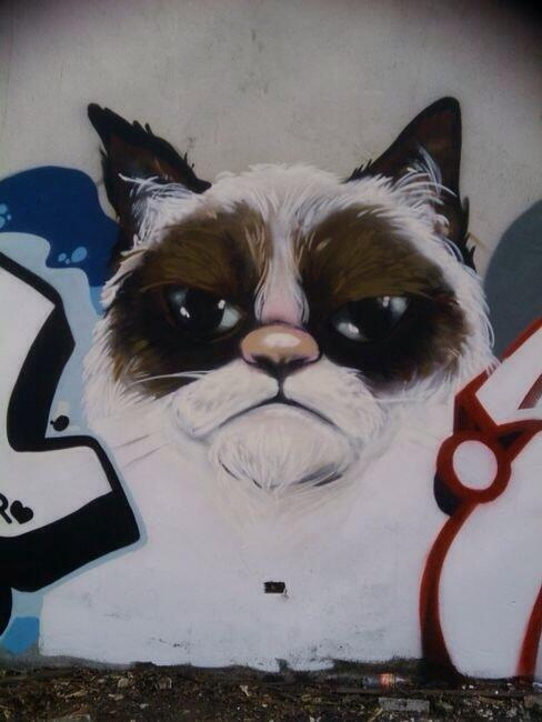 grump cat--street-art