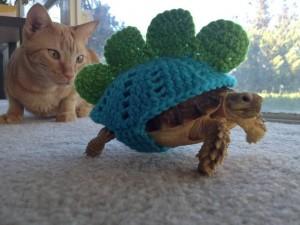 Dino Turtle
