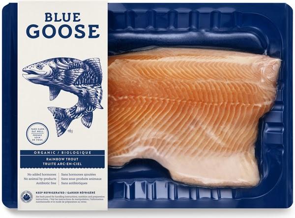bluegoose2