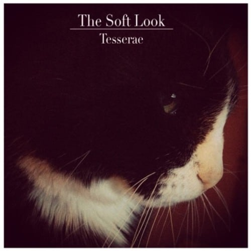 the soft look