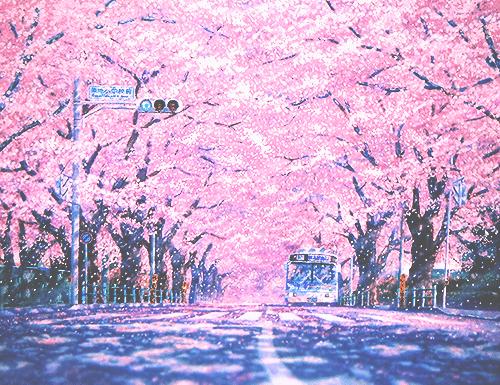 spring12