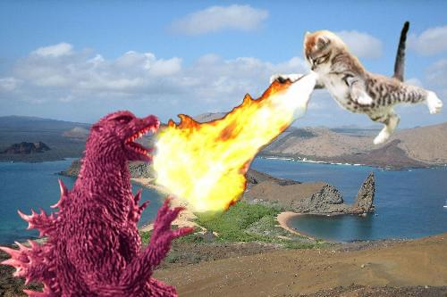 godzilla-versus-cat  Godzilla Versus Cats