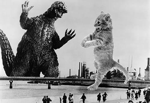 Godzilla Versus Cats