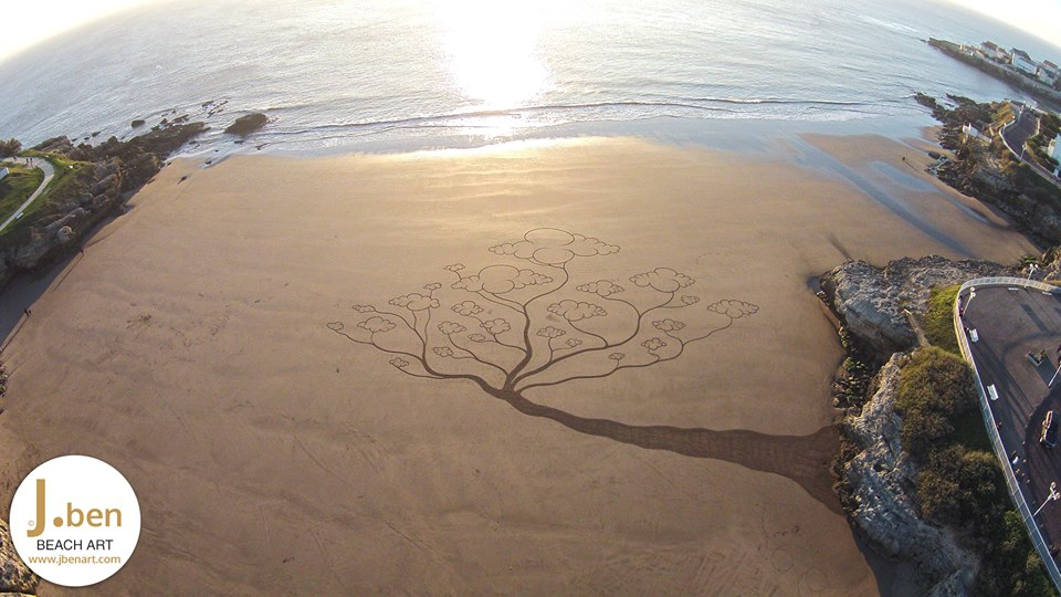beach-art-arbre