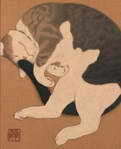 Yasunari_cat
