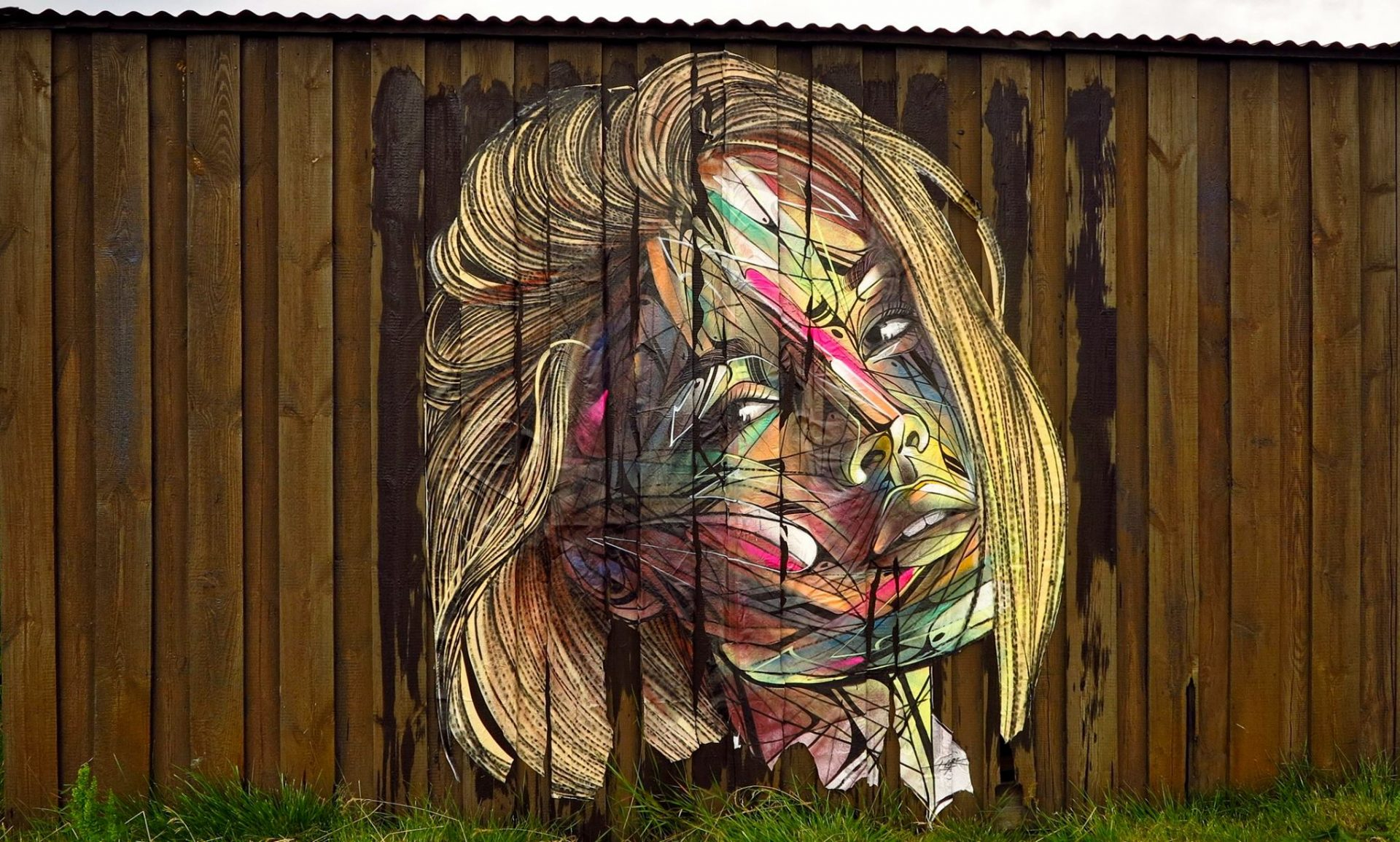 Hopare in Iceland