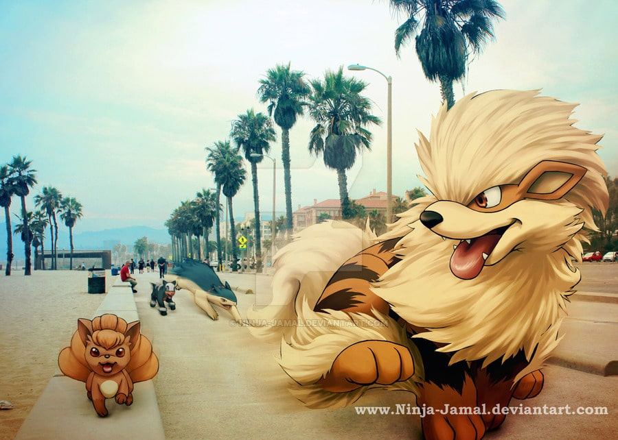 run____wild_fire_pokemon_in_la_run_____by_ninja_jamal-d98k8oa