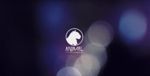 animal-records-livesession
