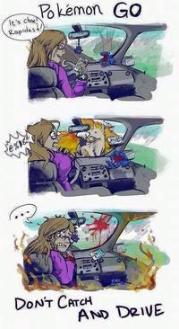 catch and drive pokemon go