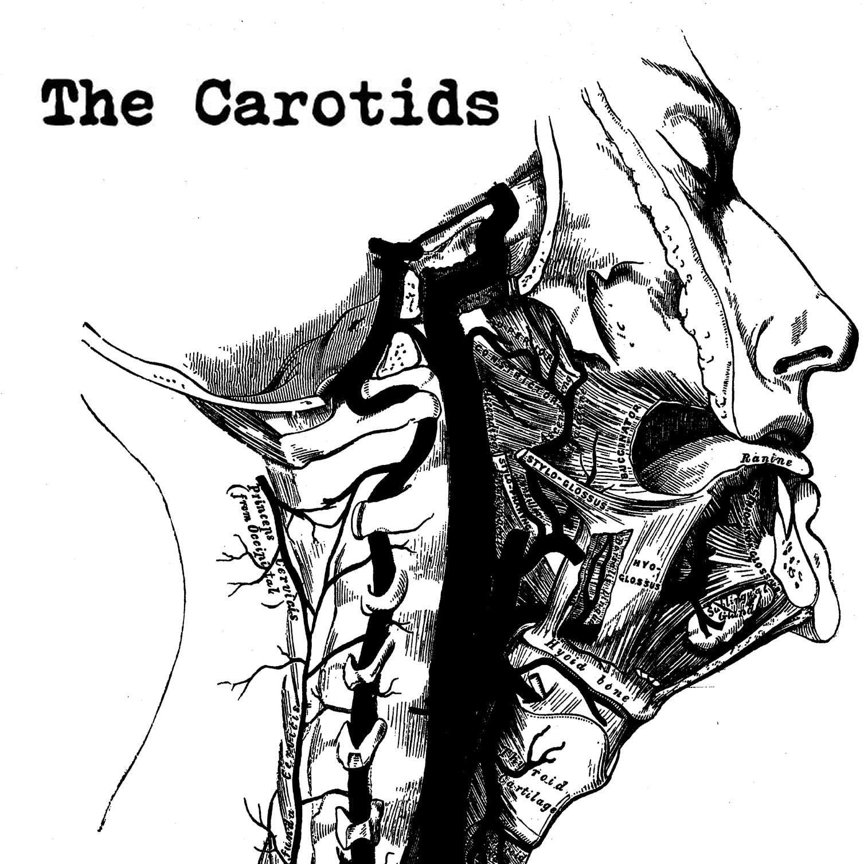 the carotids garage rock