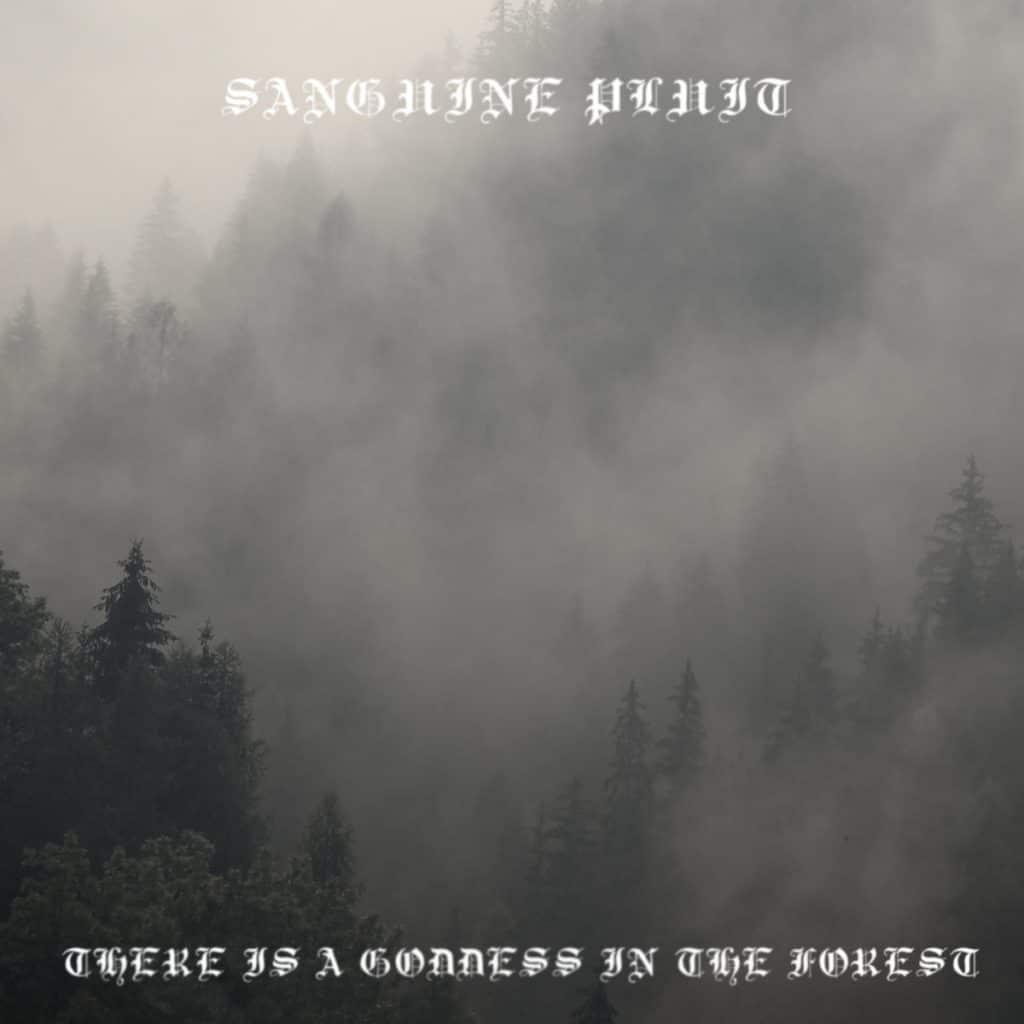 Top 5 black metal 2017 Sanguine pluit