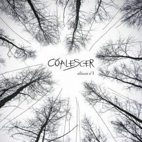 Coalescer