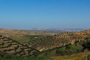 Paysage de Meknès